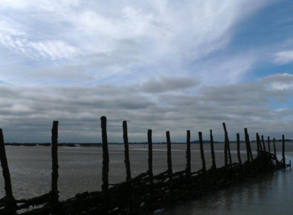 Une promenade en Baie