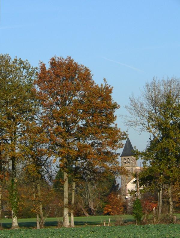 L'église du Pas Saint-L'Homer (Orne)