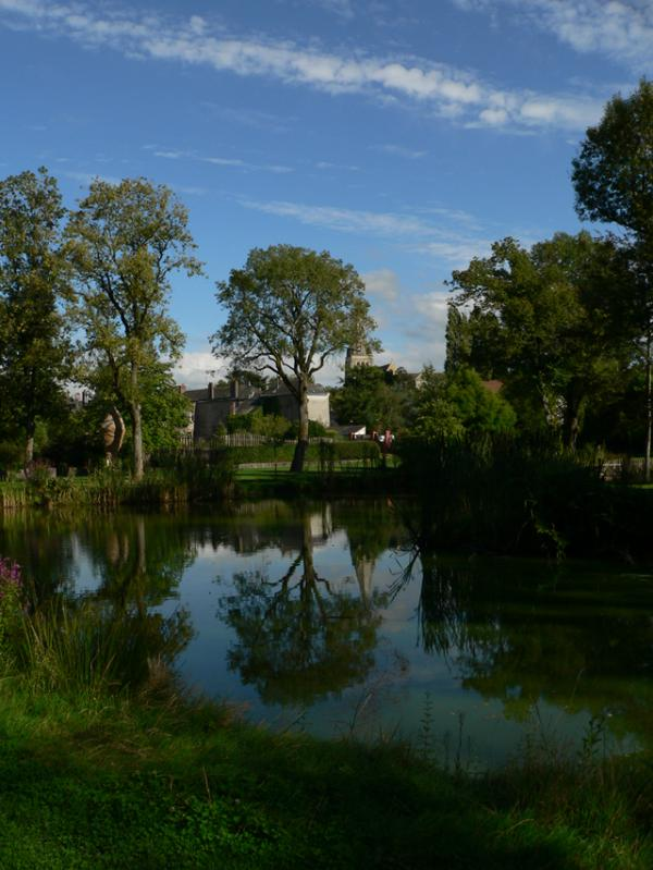 Reflets au jardin Camifolia de Chemillé (49)