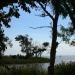 Du côté de l'estuaire de la Gironde