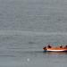 Pêche en mer de Norvège!