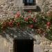 Pierres & roses