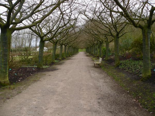 Pour la promenade (Jardins de Valloires)