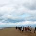 Baie du Mt-St-Michel, en marche vers le banc des Hermelles