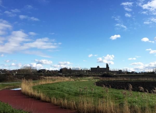 DOL de Bretagne- La Cathédrale depuis le chemin vert