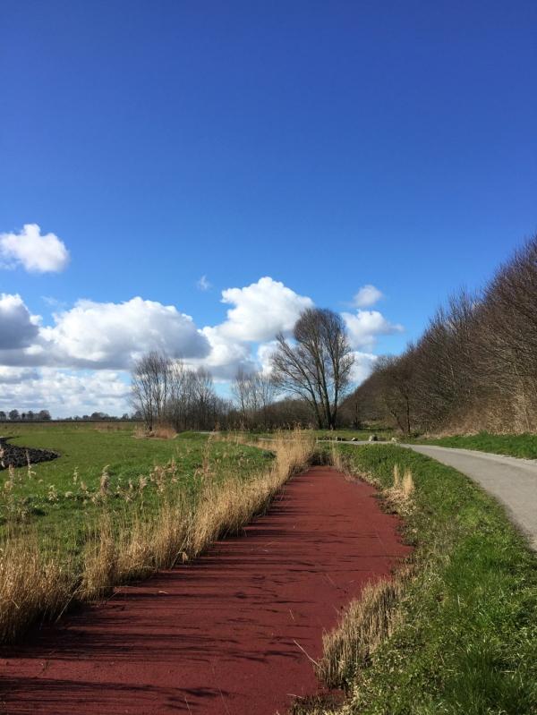 DOL de Bretagne- Le chemin vert
