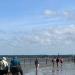 Retour de la pêche à pied dans la Baie du Mt-St-Michel