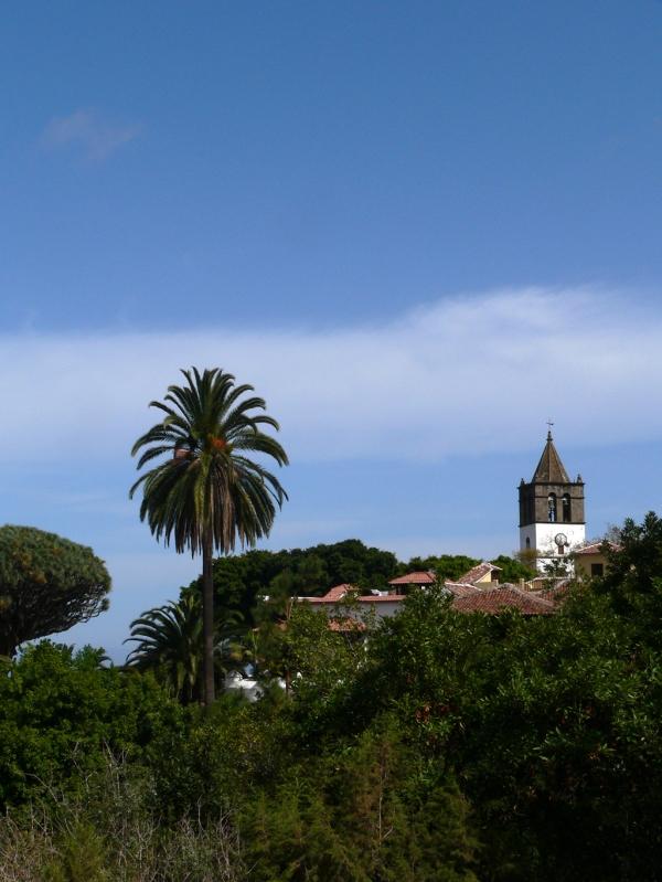 Canaries- Tenerife