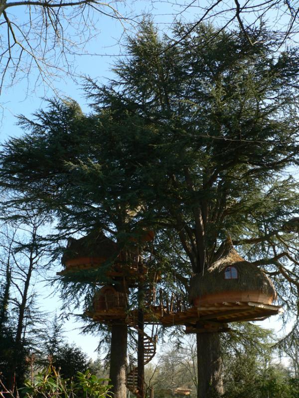 Cabanes dans les arbres. Domaine des Ormes. 35120 Epiniac