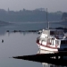 Estuaire Rance