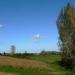 Le marais devant le Mont-Dol (35)
